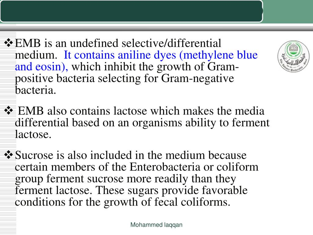EOSIN METHYLENE BLUE AGAR (EMB agar)