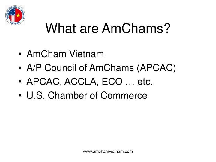What are AmChams?