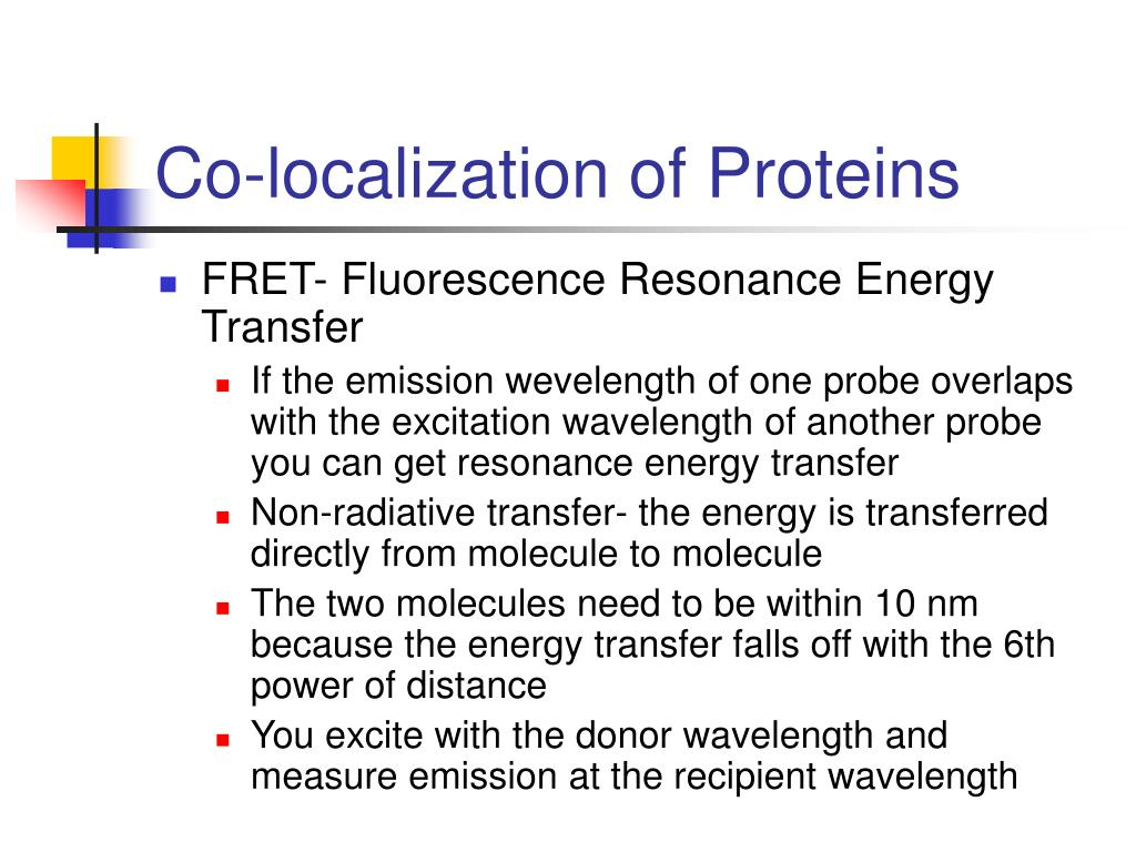 Co-localization of Proteins
