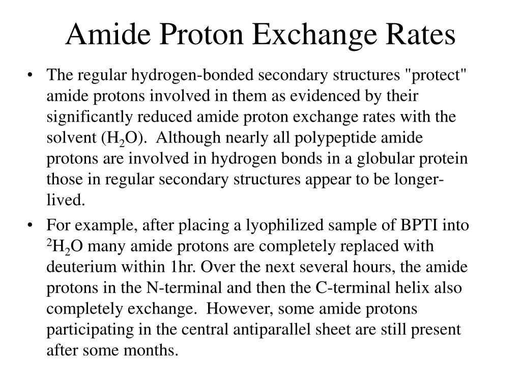 Amide Proton Exchange Rates