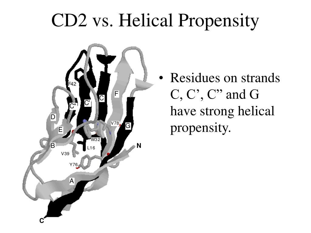 CD2 vs. Helical Propensity