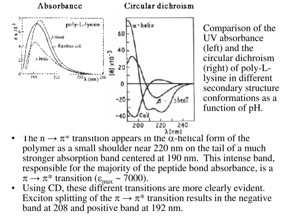 Comparison of the UV absorbance (left) and the circular dichroism (right) of poly-L-lysine in different secondary structure conformations as a function of pH.