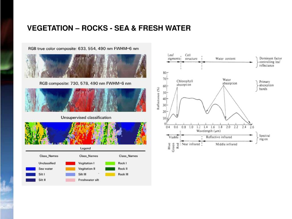 VEGETATION – ROCKS - SEA & FRESH WATER