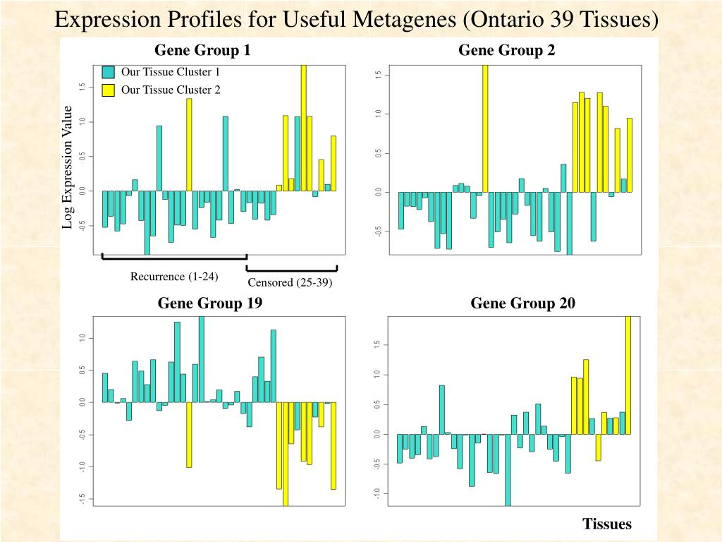 Expression Profiles for Useful Metagenes (Ontario 39 Tissues)