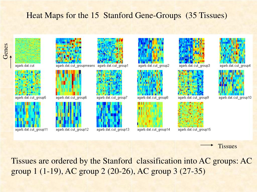 Heat Maps for the 15  Stanford Gene-Groups  (35 Tissues)