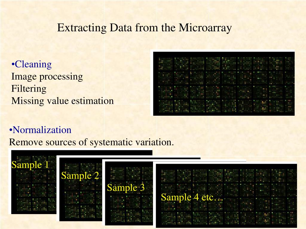 Extracting Data from the Microarray