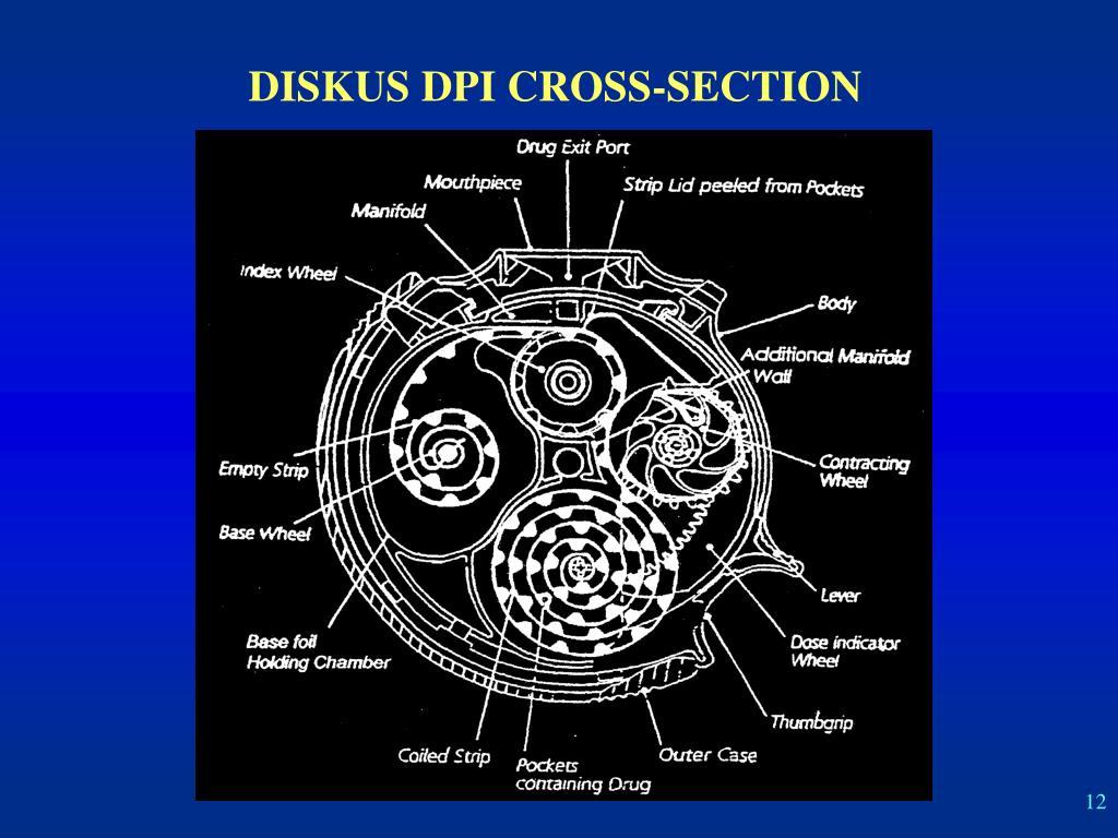 DISKUS DPI CROSS-SECTION