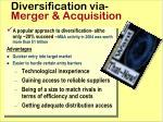 diversification via merger acquisition