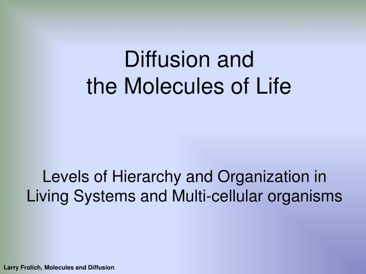 diffusion and the molecules of life n.