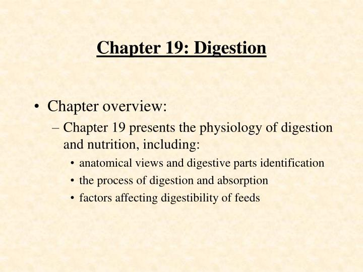 chapter 19 digestion n.
