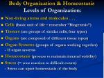 body organization homeostasis levels of organization