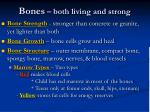 bones both living and strong