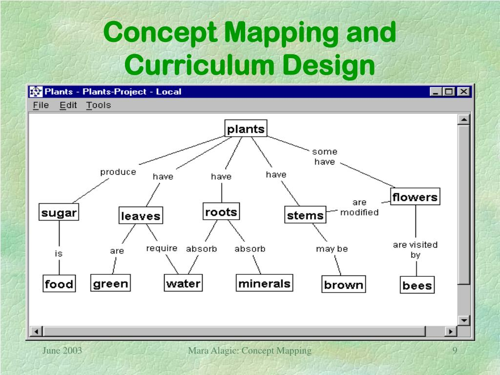 Concept Mapping and Curriculum Design