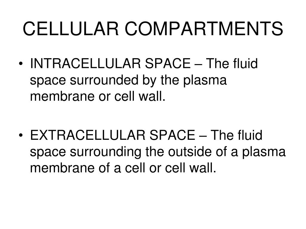 CELLULAR COMPARTMENTS