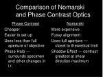 comparison of nomarski and phase contrast optics