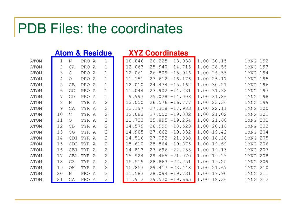 PDB Files: the coordinates