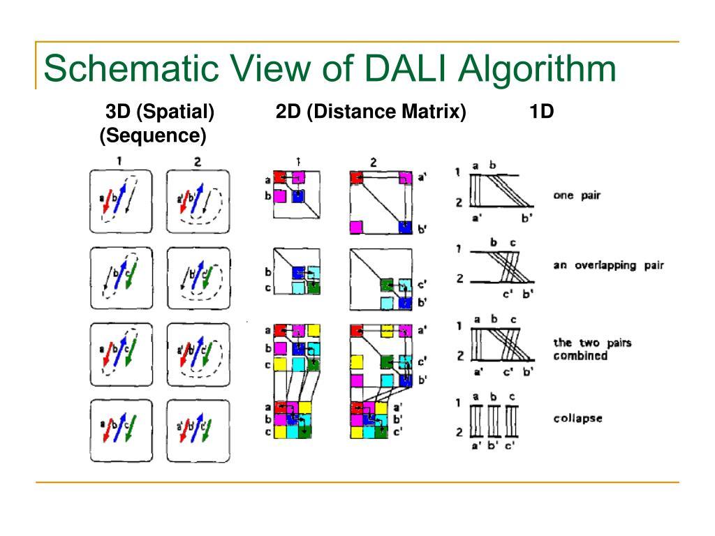 Schematic View of DALI Algorithm