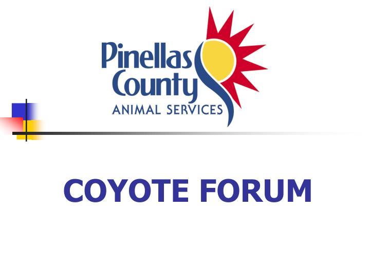Coyote forum