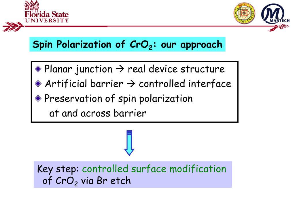 Spin Polarization of CrO