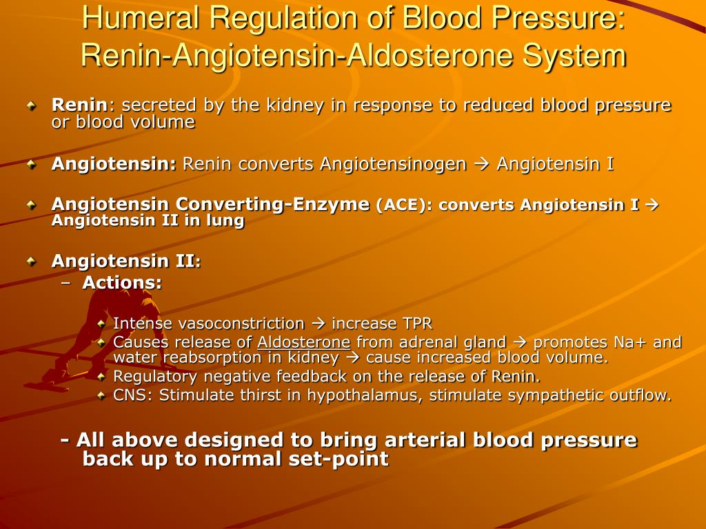 Humeral Regulation of Blood Pressure: Renin-Angiotensin-Aldosterone System