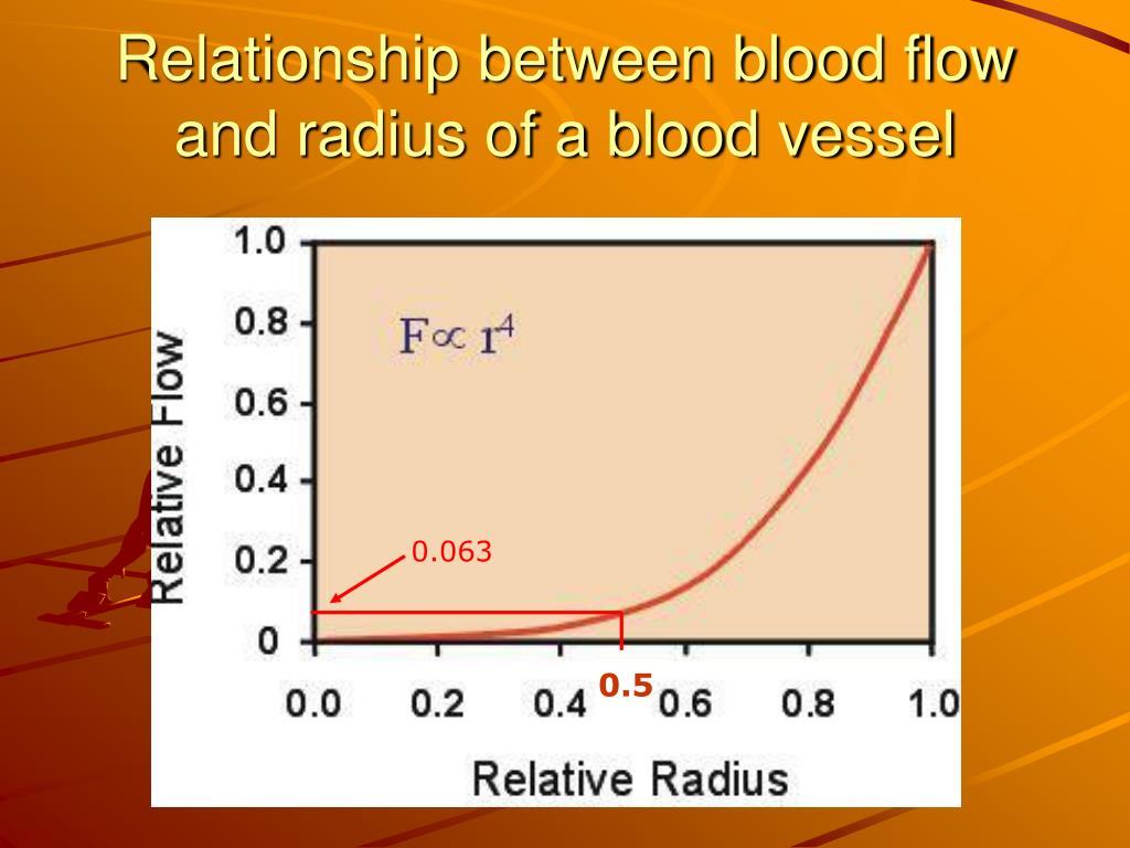 Relationship between blood flow and radius of a blood vessel
