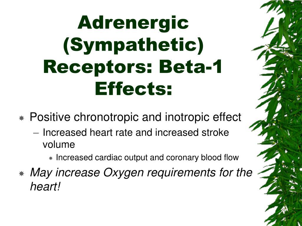 Adrenergic (Sympathetic) Receptors: Beta-1 Effects: