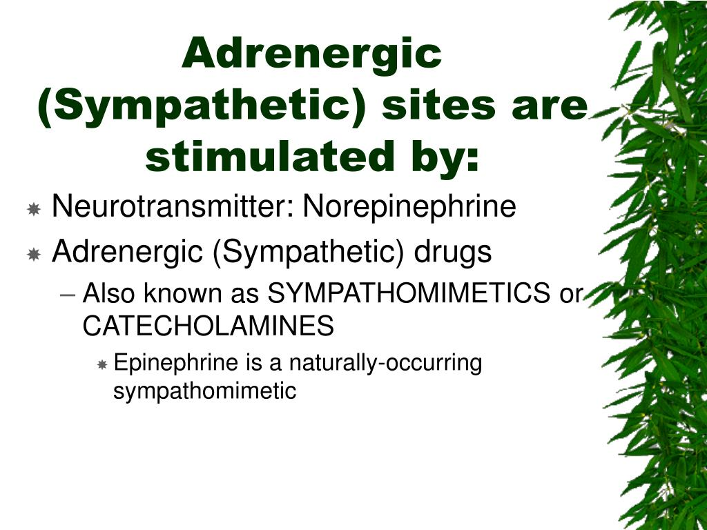 Adrenergic (Sympathetic) sites are stimulated by: