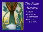 the palm herons