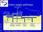 urban supply pathways