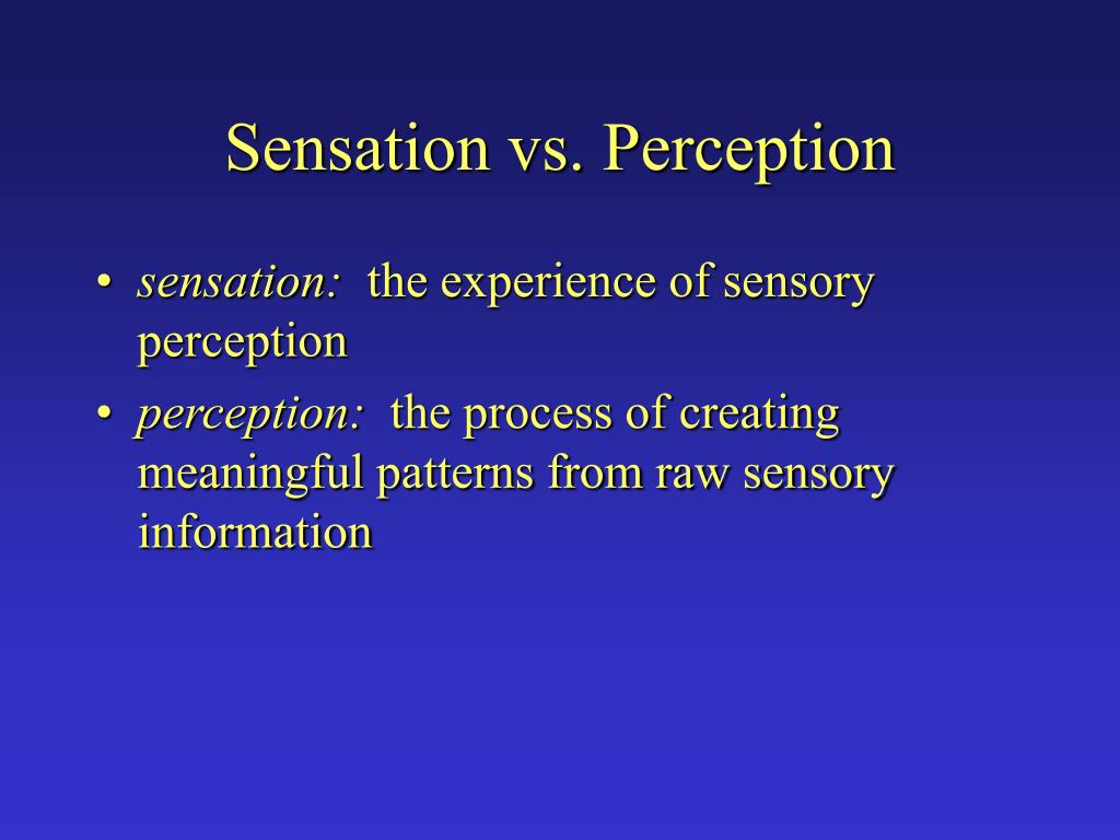 sensation vs perception