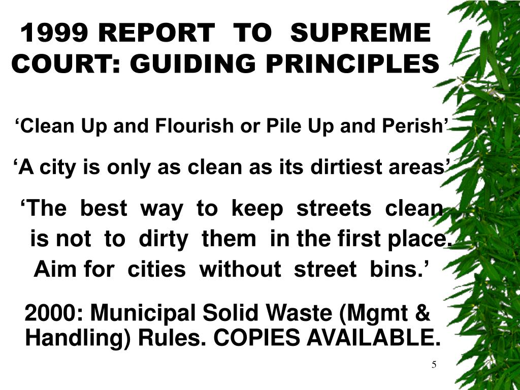 1999 REPORT  TO  SUPREME COURT: GUIDING PRINCIPLES