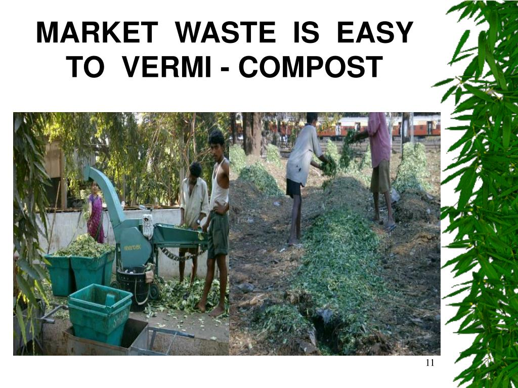 MARKET  WASTE  IS  EASY