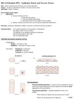 bio 210 handout 5a epithelial muscle and nervous tissues