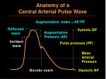 anatomy of a central arterial pulse wave