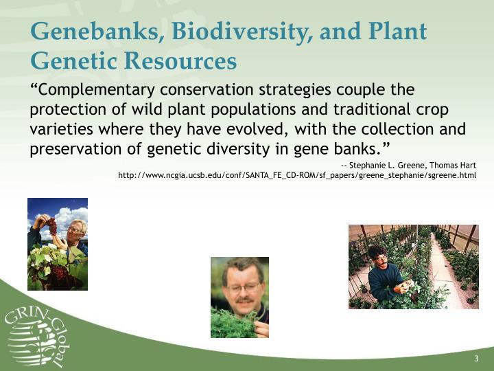 Genebanks biodiversity and plant genetic resources