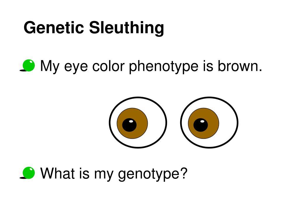 Genetic Sleuthing