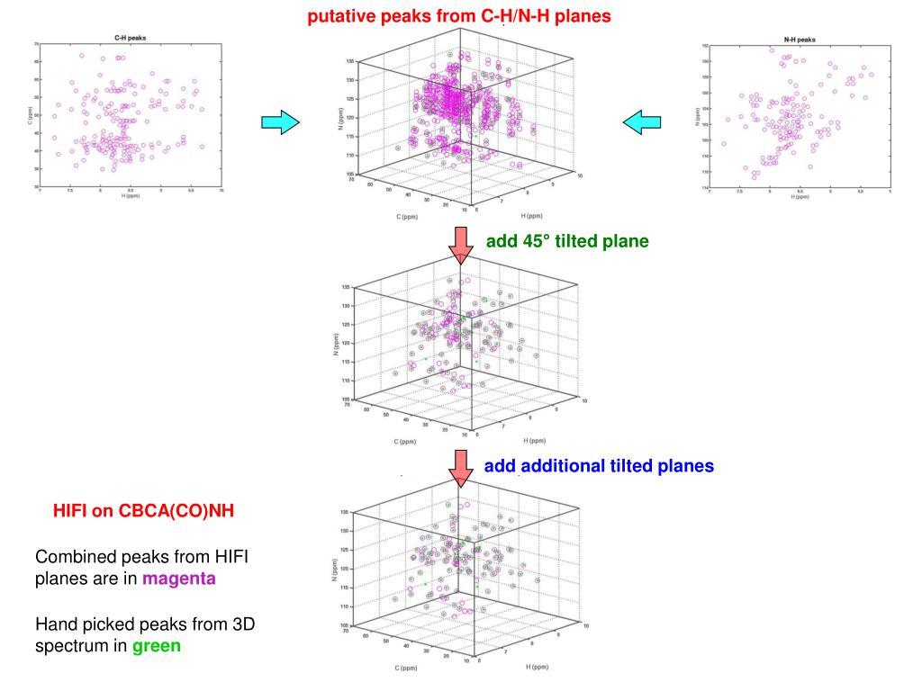 putative peaks from C-H/N-H planes