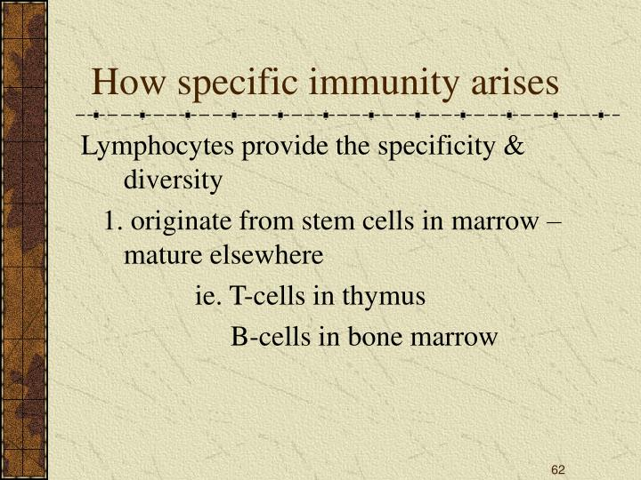 How specific immunity arises