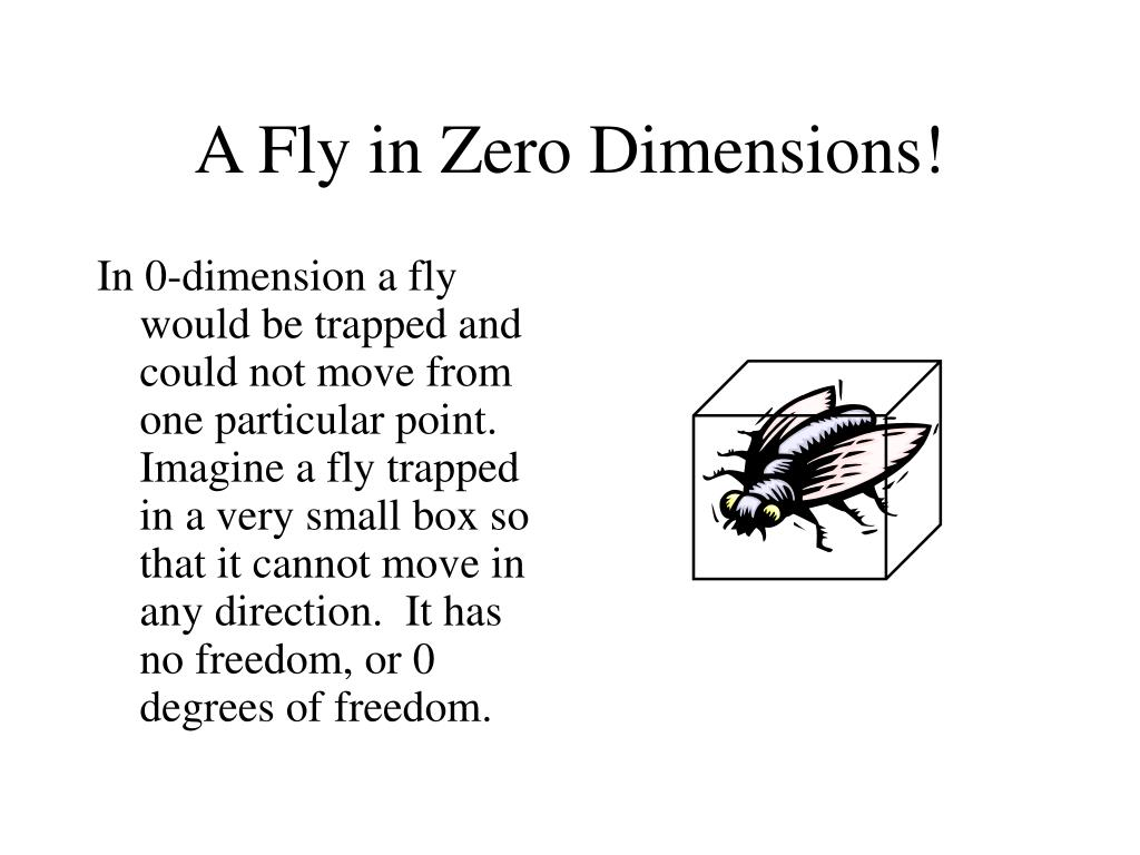In 0-dimension a fly would be trapped and could not move from one particular point.  Imagine a fly trapped in a very small box so that it cannot move in any direction.  It has no freedom, or 0 degrees of freedom.