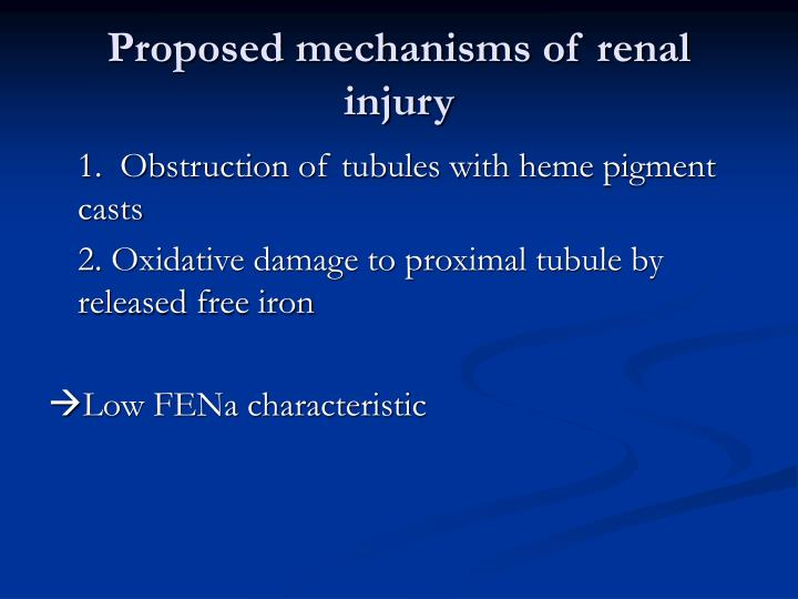 Proposed mechanisms of renal injury