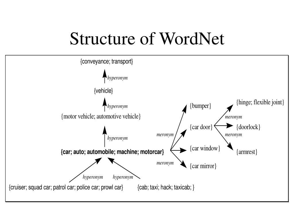 Structure of WordNet