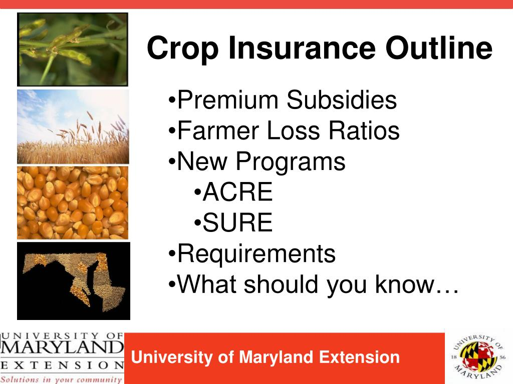 Crop Insurance Outline