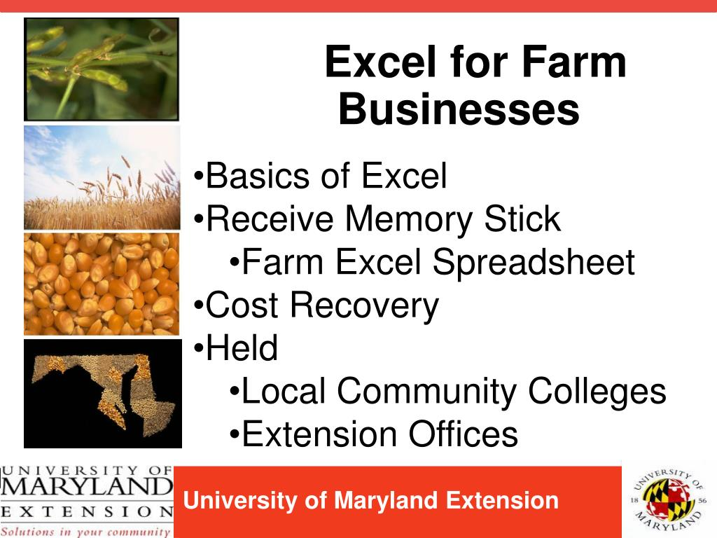 Excel for Farm Businesses