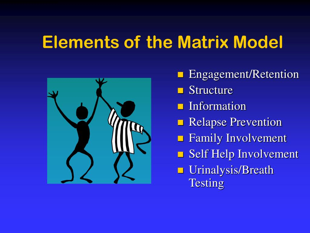 Elements of the Matrix Model