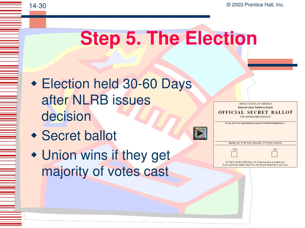 Step 5. The Election