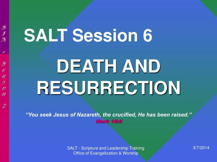 Salt session 6
