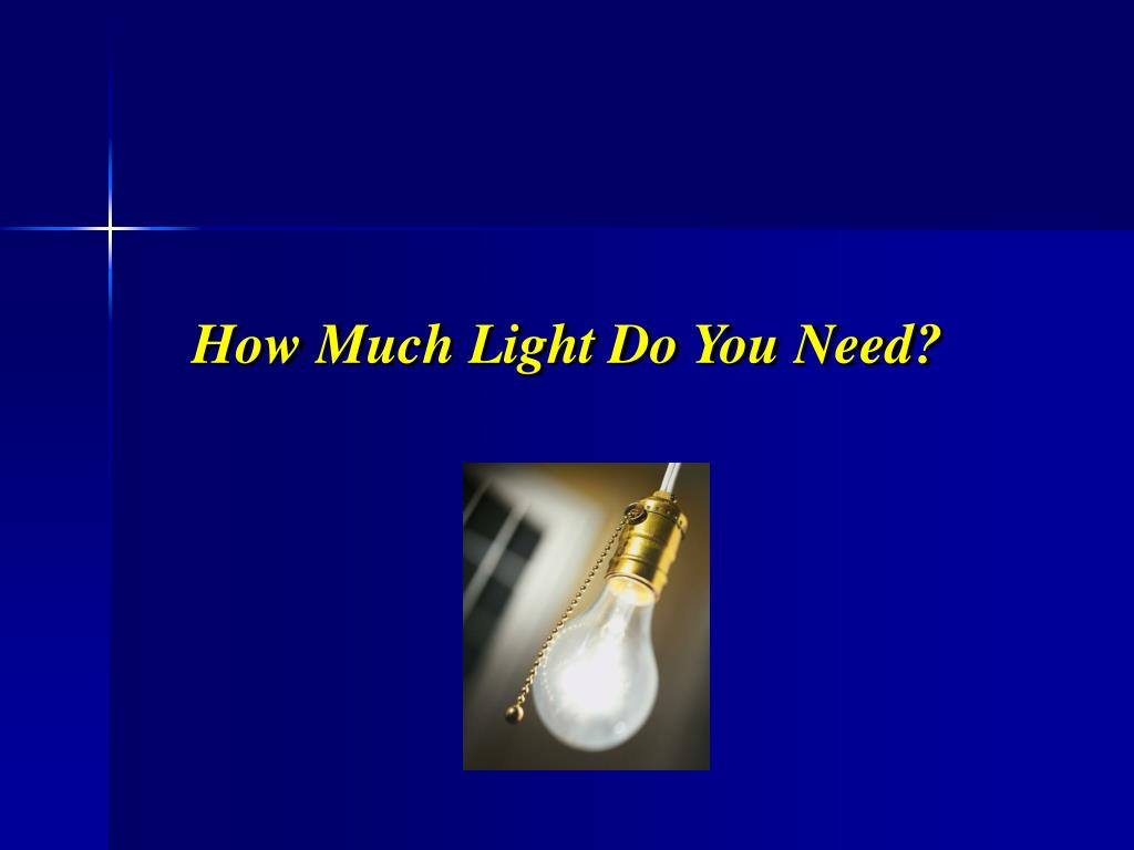How Much Light Do You Need?