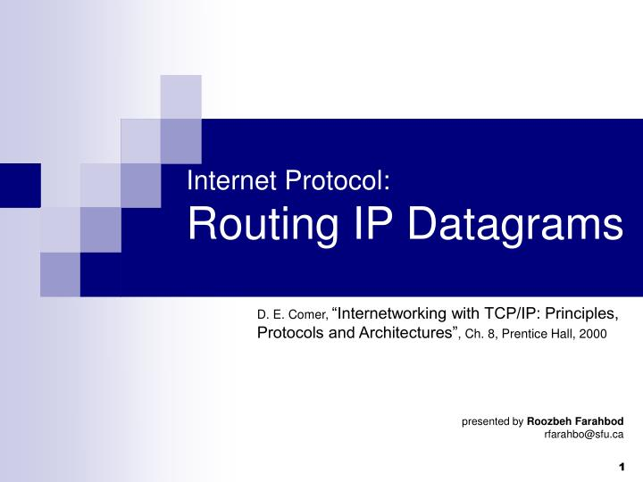 Internet protocol routing ip datagrams