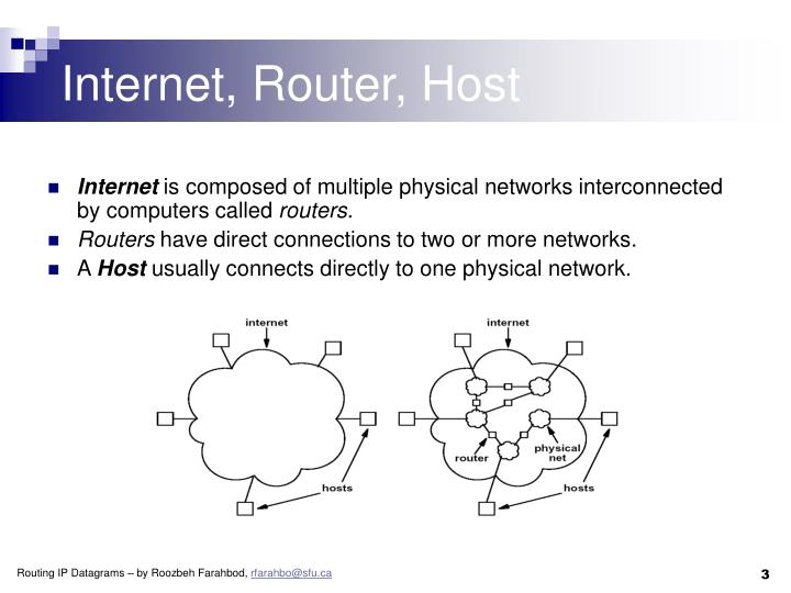 Internet router host