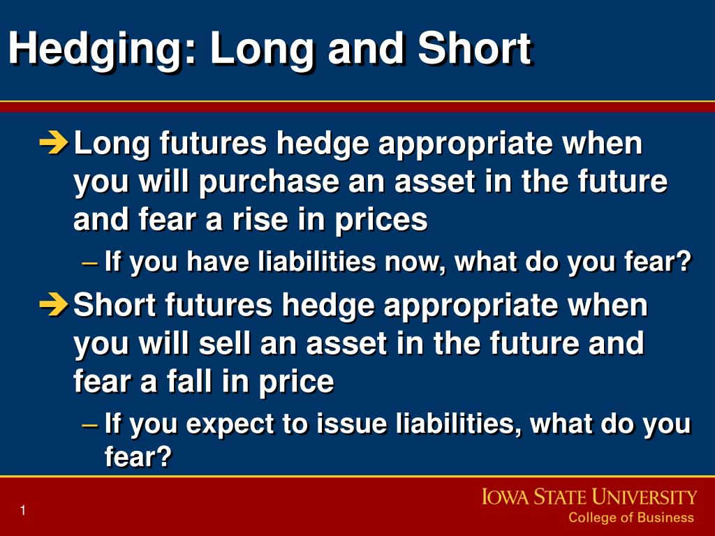 hedging long and short l.